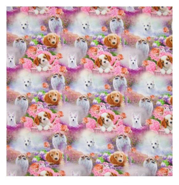 Tiere, Hunde, Welpen, Blumen, Körbe, pink